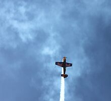 Red Bull Plane by Roxanne du Preez