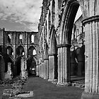 Rieveaulx Abbey by Ray Clarke