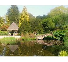 Ness Botanic Gardens, Neston, UK Photographic Print