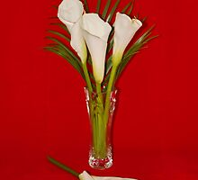 *HAPPY EASTER* with Arum Lilies by AnnDixon