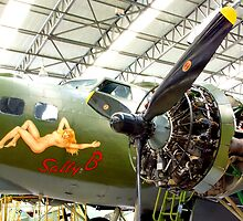 Sally B Winter Service - Duxford by Colin J Williams Photography