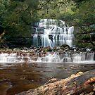 Liffey Falls by Patrick Reid