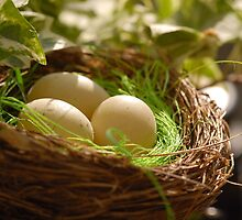 Easter Nest - Decoration by vbk70