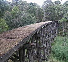 Boggy Creek bridge by Paul Bech