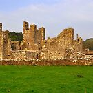 Fore Abbey. by Finbarr Reilly