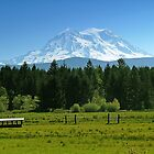 Mt. Rainier from park in eatonville, WA by Klaus Girk