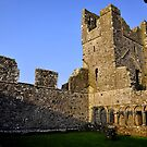 Fore Abbey.2 by Finbarr Reilly