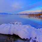 Last winter... january 2011... by Daidalos