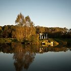 The Isle Of Love, Nesvizh Park by Dmitry Shytsko