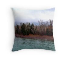 Little Signs of Spring Throw Pillow
