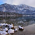 Remember Last Winter by Daidalos