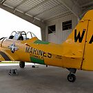 North American SNJ-6 Texan (Warbird Adventures) by Mark J Kopczewski