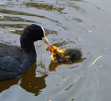 """Mmmm! That's delicious, Mum"" by Hans Bax"