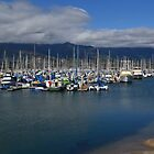 Santa Barbara Harbor Breakwater by Scott Switzer