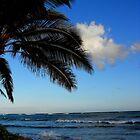 the north shore, hawaii by kenfarnaso
