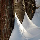 winter afternoon by Roslyn Lunetta