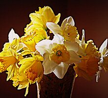 A Bouquet Of Daffodils by kkphoto1