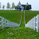 Perfect Fences by Thomas Stevens