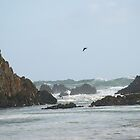 Huge waves behind the rocks by Mikayla House