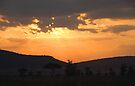Dry Season Sunset, Serengeti National Park, Tanzania by Carole-Anne