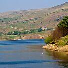 Greenbooth Reservoir. by twinnieE
