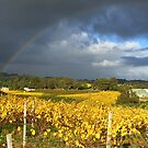 Lighter inside the rainbow by Claire Aberlé