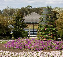View To The Pagoda - Hunter Valley Gardens Series by reflector