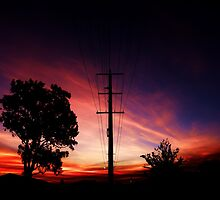 Electric Sunset by Ladedadeda