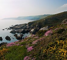 Rocky coastline near Battisborough by moor2sea