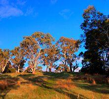 Sunlight in autumn morning 2 by woqisiyasi