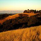 Californian Hills by soyrwoo