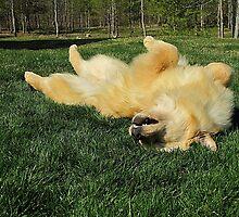 Ahhhhh! That Feels Sooooo Goooooood! by AliceMc
