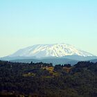 Mt. Saint Helens by searchlight