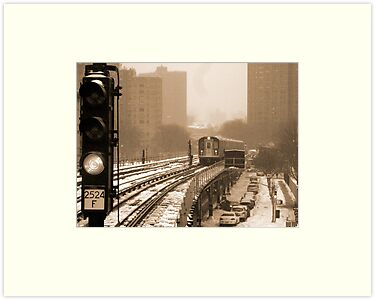 Snowy Day In Bronx  by Alberto  DeJesus