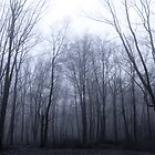 As Ghosts in the Mist by SomeGuyInNJ