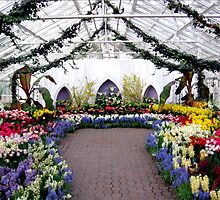 Garden: Spring Flower Show by Rose Santuci-Sofranko
