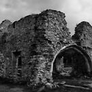 Grace Dieu Priory by Mike Topley