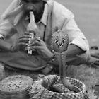 Snake Charmer, Pokhara, Nepal by darylbowen