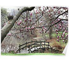 Rainy Day Magnolias Poster