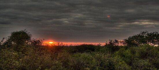 A Bushveld Sunset - HDR by Margo Naude