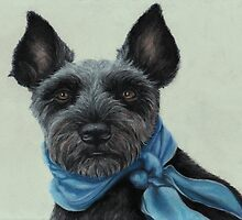 Miniature Schnauzer with a blue scarf by Pam Humbargar