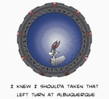 I knew I shoulda taken that left turn at Albuquerque sticker by Nana Leonti