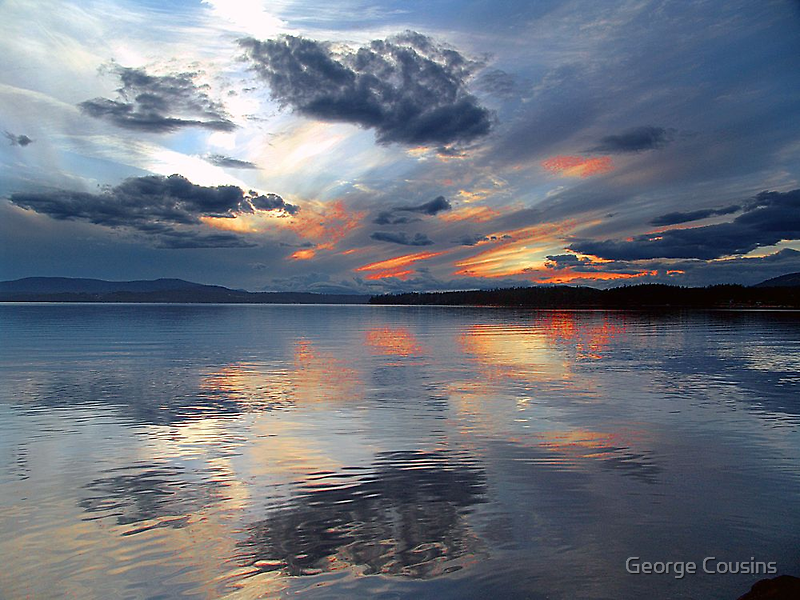 Reflections by George Cousins