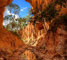 Golden Gully - Hill End by Ian English