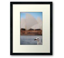 Birds eye view of Sydney Framed Print