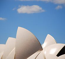 Sydney Opera House by Andy Parkinson