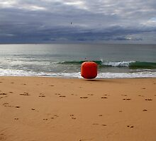 Escape Of The Red Buoy by Noel Elliot