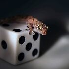 Lucky Gecko by Laughing Bones