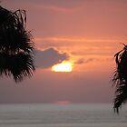 Santa-Monica Paradise by Michael Lucas