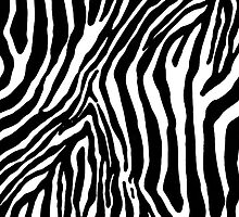 zebra as background  by Medeu